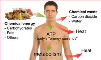 CHEMICAL HEALTH